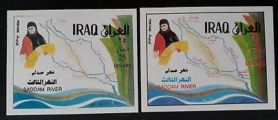 RARE 1995 Iraq pair of Saddam River Minisheets with 25D stamps MUH