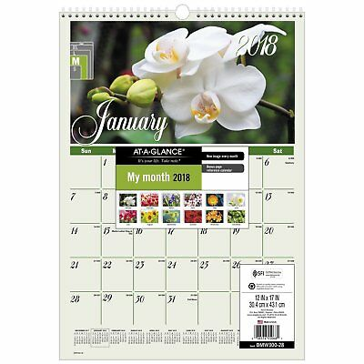 """AT-A-GLANCE Monthly Wall Calendar, January 2018 - December 2018, 12"""" x 17"""","""