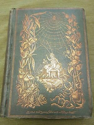 """Antique 1851 """"Episodes of Insect Life"""" by Acheta Domestica, illustrated, litho"""