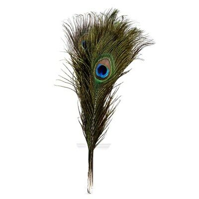 "Pack of 12 Peacock Feathers Approx 10/"" to 12/"" Inches Natural Peacock Eye Fe X3G8"