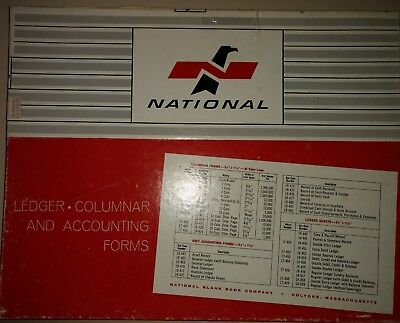 Vtg National Ledger Paper Columnar Accounting Form 18-410 Eye Ease1/4 X 11 7/8