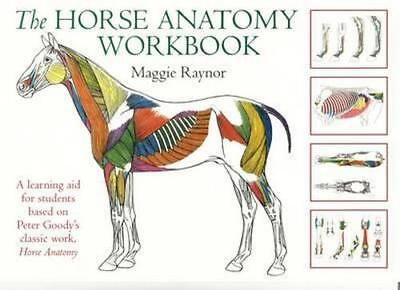 NEW The Horse Anatomy Workbook By Maggie Raynor Spiral Ringed Book Free Shipping