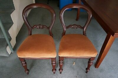 Antique balloon back cedar dining chairs