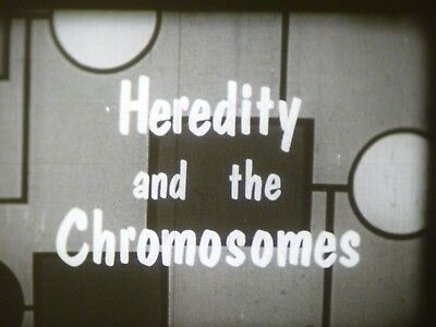 Heredity And The Chromosomes 16mm short film 1959 B&W Dr. Burr Roney