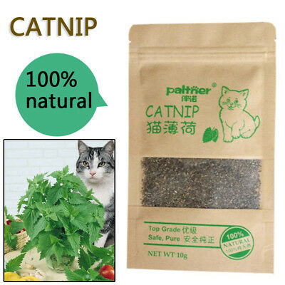 100% Natural Catnip Cat Toys Organic Menthol Flavor Snacks Pet Supplies 10g