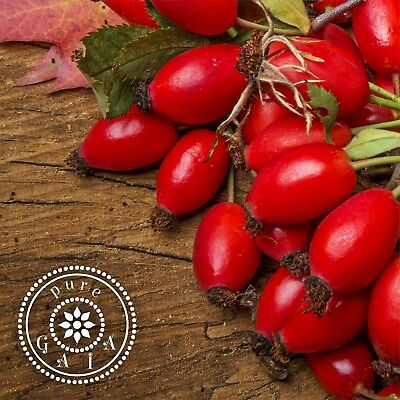 ROSEHIP OIL  ORGANIC 100% PURE & NATURAL UNSCENTED  FREE SHIPPING refill package