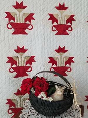 Knock Out Antique c1890s Carolina Lily in a Basket QUILT Provenance Illinois