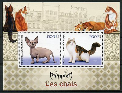 Ivory Coast 2017 MNH Cats Norwegian Cat Minskin 2v M/S Chats Cat Stamps