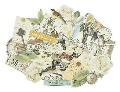 ~ ANTHOLOGY ~ COLLECTABLES 40+ Die Cut Shapes Scrapbook Card Making