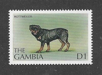 Dog Art Full Body Portrait Postage Stamp ROTTWEILER The Gambia Africa MNH