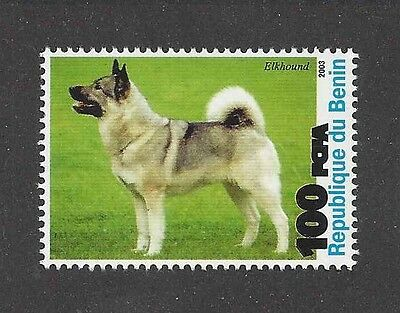 Dog Photo Full Body Portrait Postage Stamp NORWEGIAN ELKHOUND Benin 2003 MNH