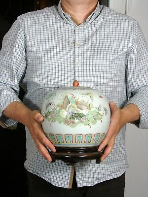 19th C Huge Chinese Porcelain Ginger Pot Butterflies & Birds Decoration, Stand