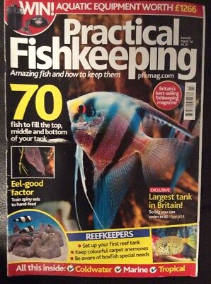 Practical Fishkeeping March 2014 Issue 3 Eel Top Middle Bottom Reefkeepers