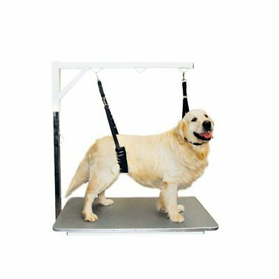 SHOW TECH Comfort Belly Strap for Big Dog  Dog Pet Grooming