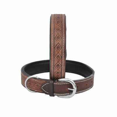 Soft Padded Leather Personalized Dog Collar Small /Medium /Large free Shipping