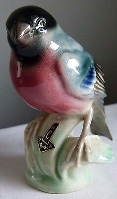 Vintage Cortendorf Porcelain Bullfinch Bird Figurine Germany w/ Label