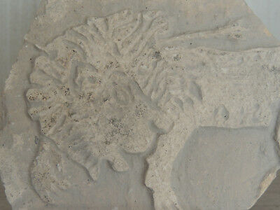 Antique Stone Fragment With Graffiti On Relief