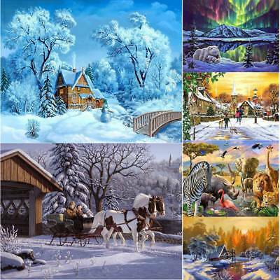 DIY Frameless Oil Painting Kit Paint By Numbers for Adult And Children Beginners