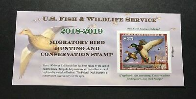 WTDstamps - #RW85A 2018 - 2019 - US Federal Duck Stamp - Post Office FRESH