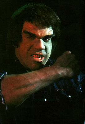 The Incredible Hulk Poster Page . 1978 Tv Series . Lou Ferrigno . H5