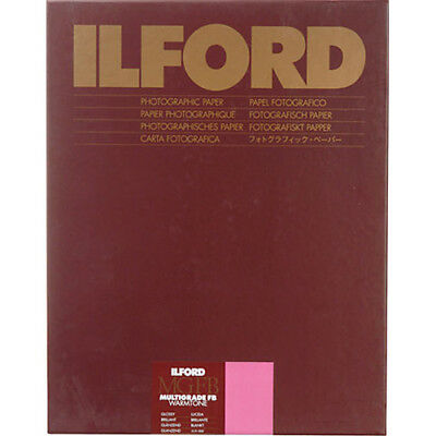"Ilford Multigrade Warmtone Resin Coated Paper (20 x 24"", Pearl, 10 Sheets)"