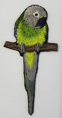 "Dusky Conure, Parrot, Bird  Embroidered Patch 1.8"" x 3.9"""