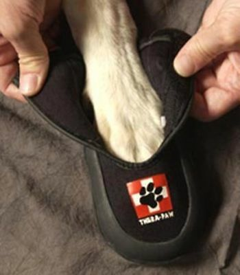 Thera Paw Protector Large Padded Boot Interior Padding Waterproof Canine Dog
