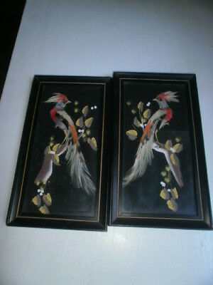 VINTAGE Pair of PAINTING PICTURE BIRD w/ REAL FEATHERS  WOOD FRAME