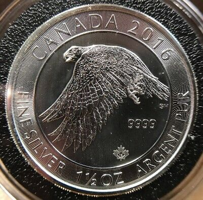 2016 1 1/2oz Canada 8 Dollars Falcon Silver Coin Maple Leaf Privy BU Condition!