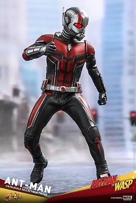 Hot Toys Ant-Man and the Wasp 1/6th scale Ant-Man Collectible Figure MMS497