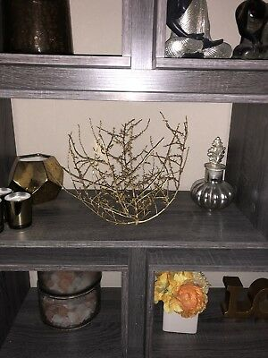 Gold Texas Desert Tumbleweed, tumble weed Russian Thistle Size Small 10-12""