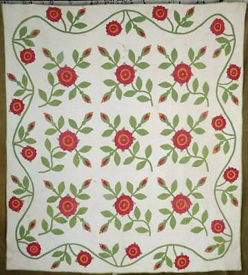 Pre Civil War Dated 1859 FABULOUS Whig Rose  Antique QUILT Red Green Cheddar