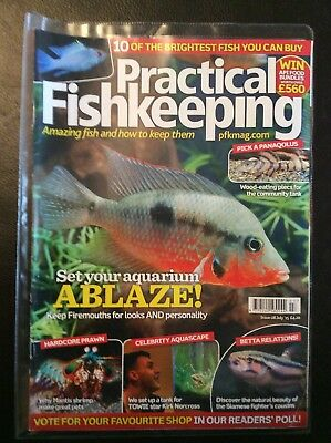 Practical Fishkeeping July 2015 Issue 8 Firemouths Mantis Shrimp siamese fighter