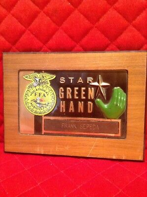 Star Green Hand California Vocational FFA Agriculture Award Vintage