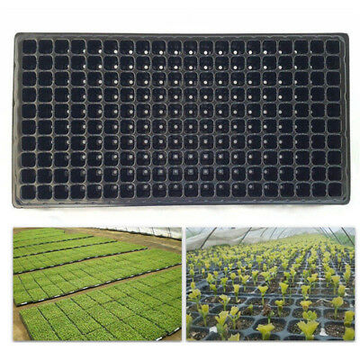 200 Cell Seedling Starter Tray Seed Germination Plant Propagation LR