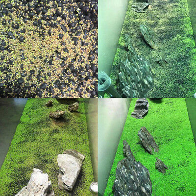 5g/bag Aquarium Plant Seeds Fish Tank Aquatic Water Grass Foreground Easy Plants