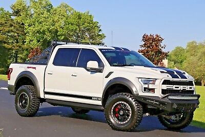 2017 ford f 150 raptor 103 picclick. Black Bedroom Furniture Sets. Home Design Ideas