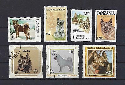 Dog Art Head & Body Study Postage Stamp Collection NORWEGIAN ELKHOUND 7x CTO MNH