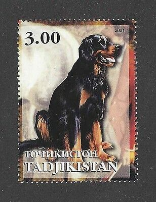 Dog Art Full Body Portrait Postage Stamp GORDON SETTER Tadjikistan 2001 MNH