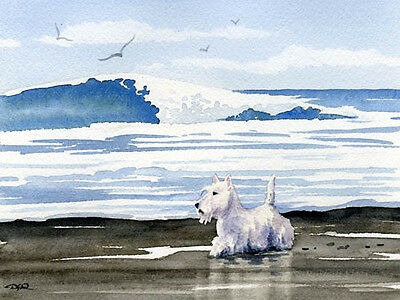 SCOTTISH TERRIER BEACH Dog Watercolor 8 x 10 ART Print Signed by Artist DJR