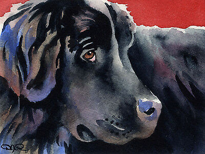 NEWFOUNDLAND Dog Watercolor 8 x 10 ART Print Signed by Artist DJR
