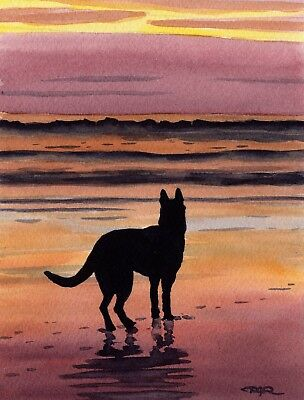 GERMAN SHEPHERD Beach Watercolor DOG 8 x 10 ART Print Signed by Artist DJR