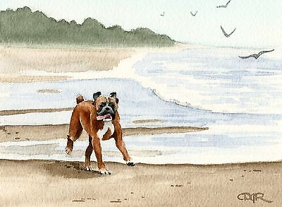 BOXER AT THE BEACH Watercolor ART Dog 8 x 10 Print Signed by Artist DJR
