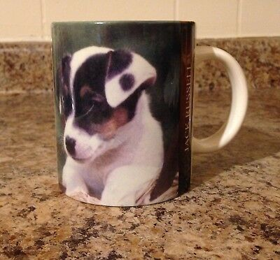 Jack Russell Terrier Dog Coffee Mug Cup With Description Collectible Dog Decor
