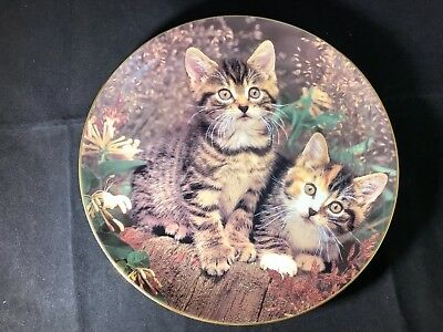 """Mitten and Mischief"" Kittens Danbury Mint Collector Plate 'Purrfect Portraits'"