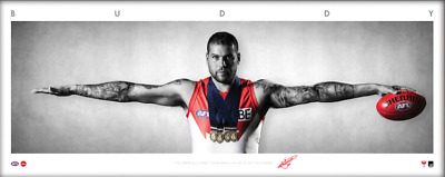 Buddy Franklin Auto Wings Unframed - Sydney Swans Official AFL