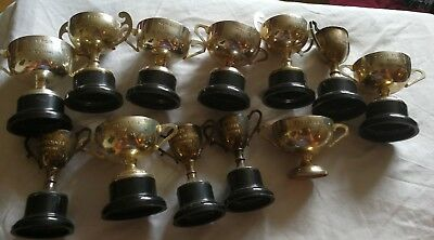 Collection Of Silver Plated Gardening Trophies