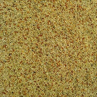 Bucktons Special Budgie Food 20kg - High Quality Cage & Aviary Bird Seed Mix