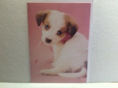 3 russell terrier note cards