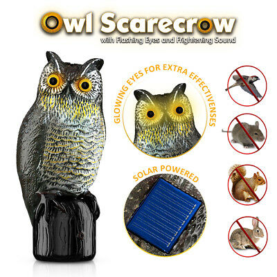 Fake Owl Decoy Bird Repellent Motion Activated & Solar Flashing Eyes & Sound